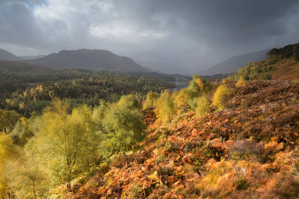 Autumn Gold - Photographic Tour - SCOTLAND: Cairngorms National Park