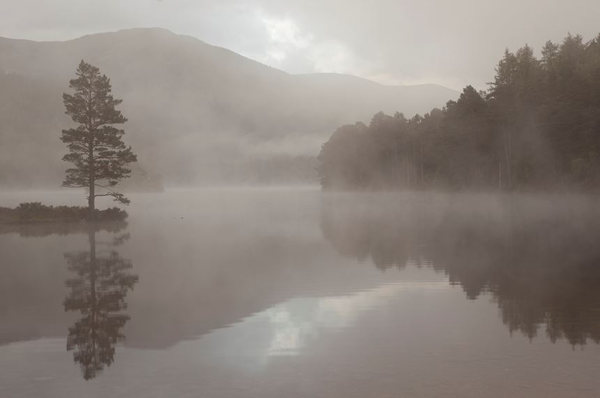 Misty dawn over Loch an Eilein, Cairngorms National Park, Scotland. - Photo: Peter Cairns