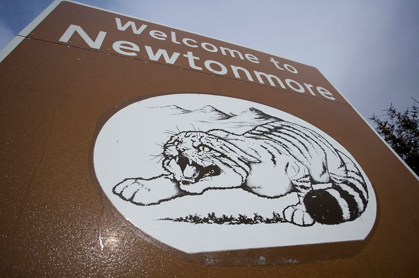 Scottish wildcat on village sign, Newtonmore, Scotland. - Photo: Peter Cairns