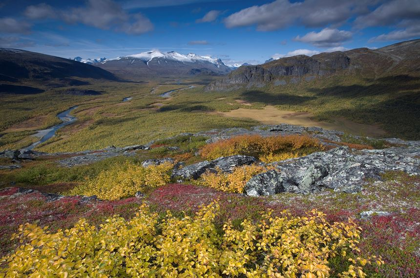View along Rapadalen, Sarek National Park, Laponia World Heritage Site, Sweden - Photo: Peter Cairns
