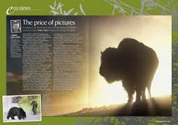 PP EcoViews August 2008 -