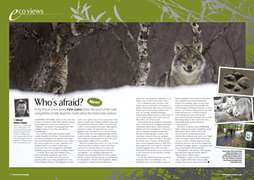 PP EcoViews April 2008 -