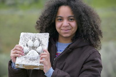 Young wildlife watcher holding up plaster cast of wolf footprint, Yellowstone National Park, USA