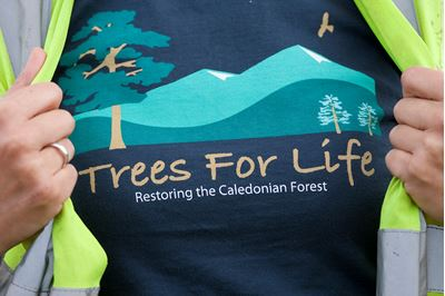 Trees for Life t-shirt worn by tree planting volunteer, Scotland..