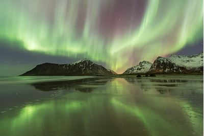 Northern lights (aurora borealis) over Skagsanden beach, Flakstadoya, Lofoten, Norway.