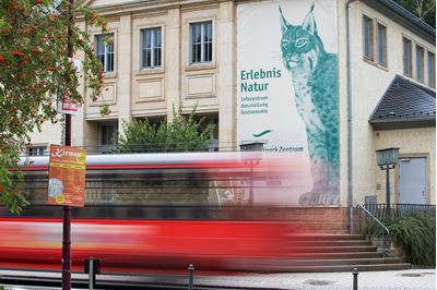 Information Centre for Saxon Schweiz National Park in Germany promoting lynx as a symbol of wildness.