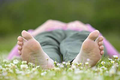 Woman lying in field of daisies on a summer day, Cairngorms National Park, Scotland