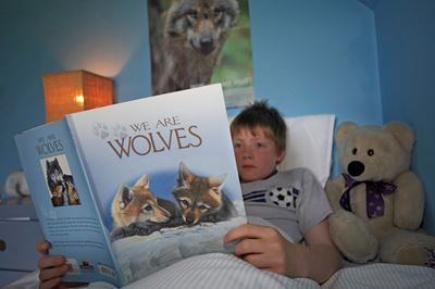 Young boy reading book about wolves.